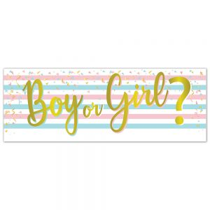 Baby | Boy or Girl Banner