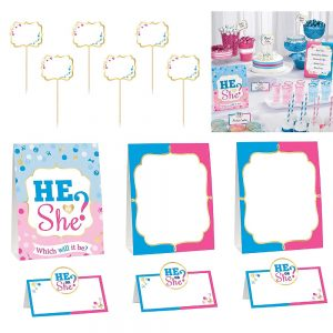 Girl or Boy Gender Reveal Buffet Decor