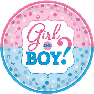 Girl or Boy Gender Reveal Plato Lunch