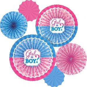 Girl or Boy Gender Reveal Fan Decor