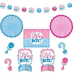 Girl or Boy Gender Reveal Room Decor