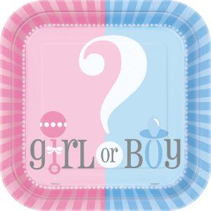 Girl or Boy Plato Lunch